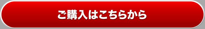 デリヘル開業サポートオーダーボタン
